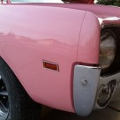 Playmate of the Year AMX returns to its original pink